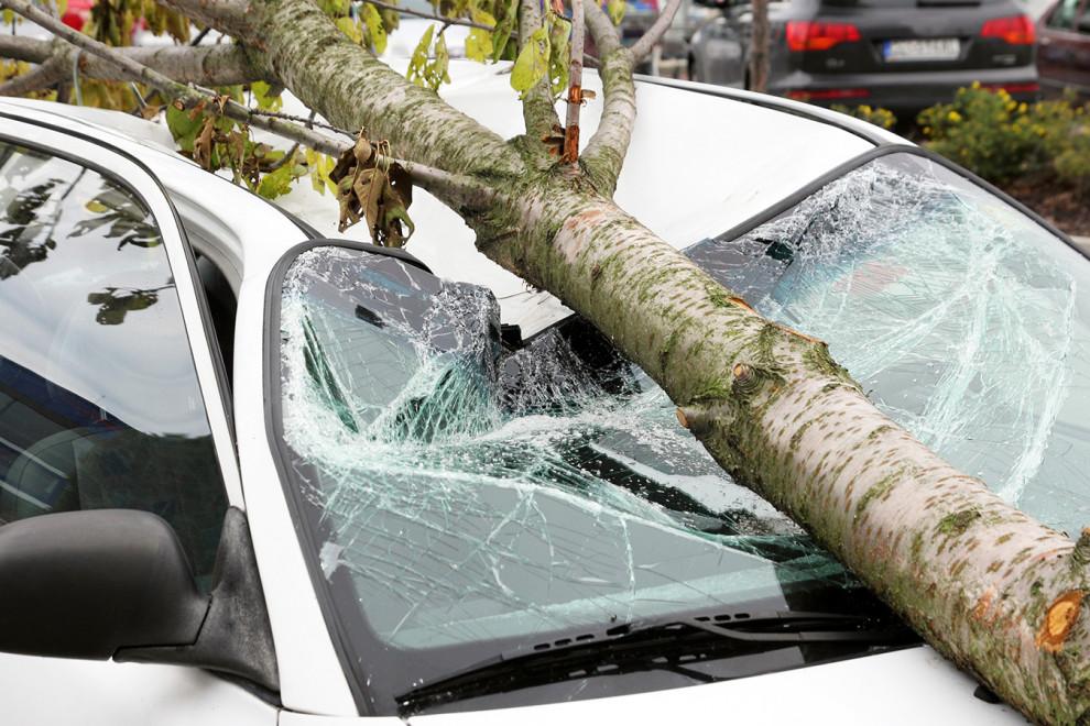 Daños meteorológicos coche